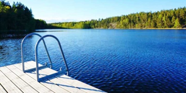 Best Dock Ladders